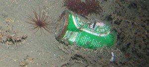 Des déchets dans les parties les plus profondes et isolées des océans