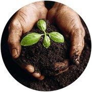 composting kits morris plains NJ - http://www.ecorichenv.com