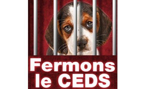 Pétition : Pétition pour la fermeture du CEDS et le développement de méthodes substitutives à l'animal par les laboratoires