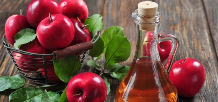 Apple Cider Vinegar: Burns Fat And Reduces Cholesterol - Healthy Food Society