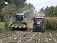 ..: Chambre régionale d'agriculture Midi-Pyrénées [La maîtrise des butyriques : le reflet d'une bonne hygiène globale] :..