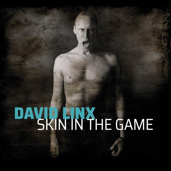 David Linx: Nouvel album Skin in The Game | Muzikomag
