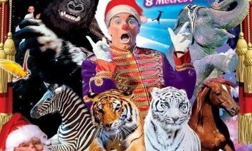 Pétition : NANTES : suite à la venue du cirque Médrano : le mouvement continue pour un cirque SANS animaux