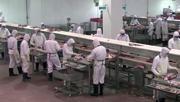 Inde : premier exportateur de viande bovine - videos.arte.tv