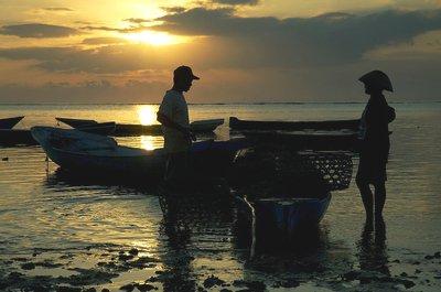 Le développement durable à l'épreuve des rapports Nord-Sud