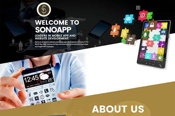 Dallas Website Design Inc.