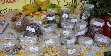 Vive les semences libres ! | ActuWiki
