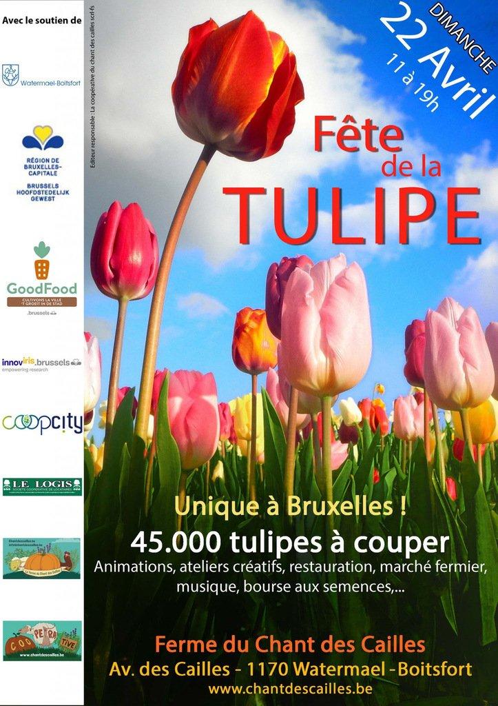 Fête de la Tulipe - ce dimanche 22 avril  - LNO