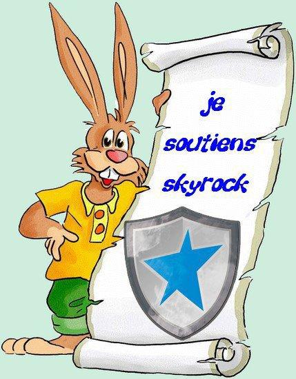 Je soutiens Skyrock !