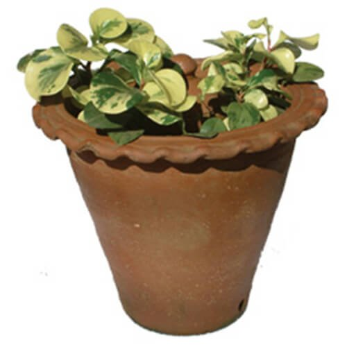 composting kits www.ecorichenv.com | Diigo