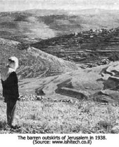Jusqu'en 1890, la Palestine était un désert abandonné, les Juifs l'ont fait fleurir | Israël Flash: informations et analyses sur Israël