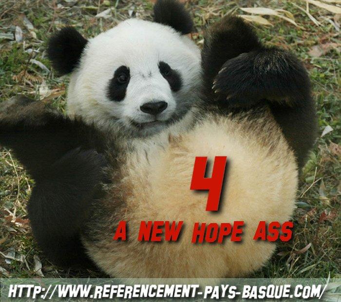 Panda 4 infos et remede efficace !