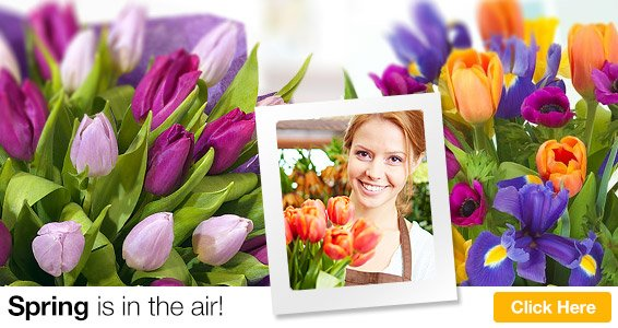 BEAUTIFUL Flowers Delivered UK - FREE Delivery - NEXT Day Flowers
