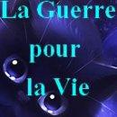 La Guerre pour la Vie, mon blog avec Pimentou ^^
