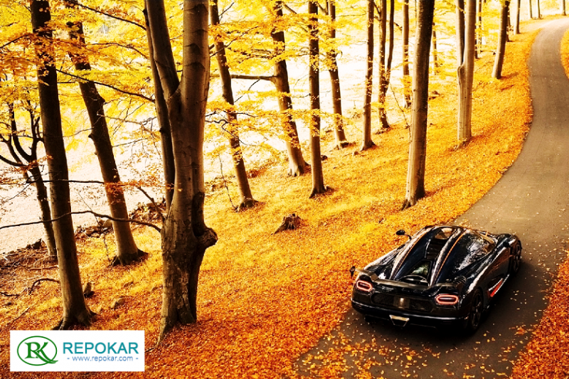 A Perfect Car for a Perfect Fall from RepoKar.com