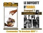 Une ex-soldate israélienne admet avoir tué beaucoup d'enfants palestiniens - [CAPJPO - EuroPalestine]