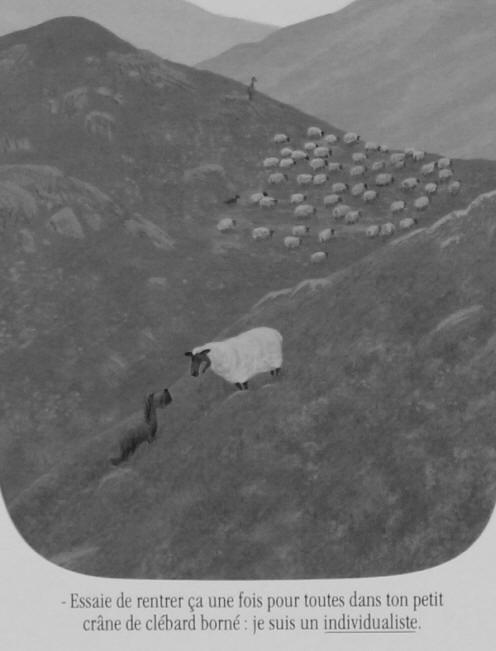 Raoul KERGOMARD, élevage de Border collies dans l'Aude.