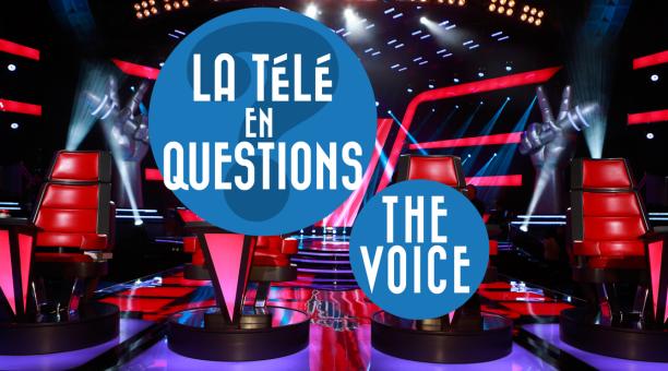 Comment sont sélectionnés les candidats de The Voice ? (La télé en questions) Actu - Télé 2 Semaines