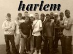 Harlem 95490 - Blog de Vaureal95490