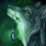 loups-un-espoir