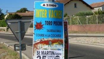 Pétition : Annulez les toros piscines, taureaux ball et courses à la cocarde à St Martin d'Ardèche