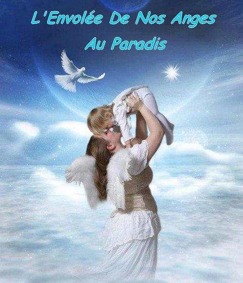 Mon Forum: L'Envolée de Nos Anges au Paradis