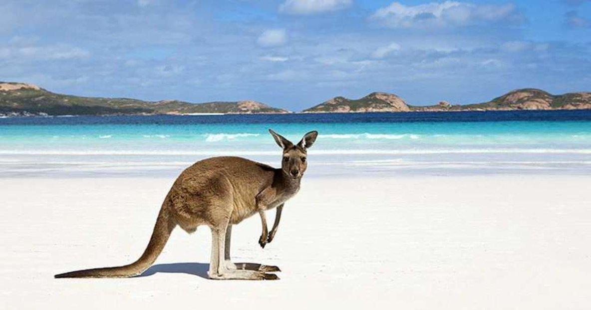 À la conquête de l'Australie