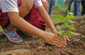 Selon La Science, Le Jardinage Serait Un Antidépresseur Naturel... Génial Et Voici Pourquoi: »