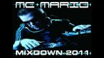 Barbra Streisand (Afrojack Remix) - MC MARIO MIXDOWN 2011