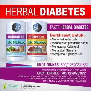 Jual Obat Diabetes Herbal Aman, Tanpa Efek Samping | Magdalenastore.com