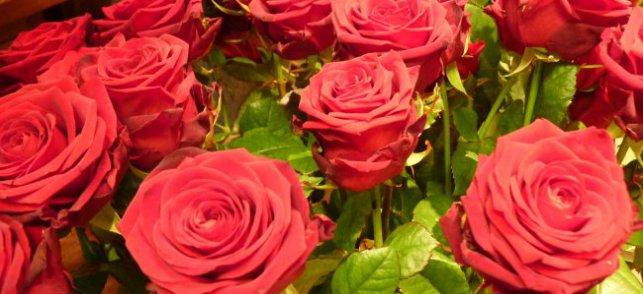 Affaire Enzo : des roses pour Valérie Trierweiler - Tendance Ouest