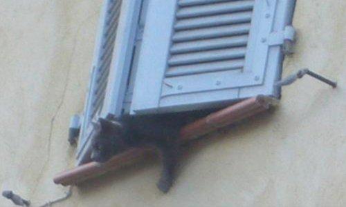 Pétition : Il faut sauver 2 chats enfermés, abandonnés par leur maîtresse depuis 3 semaines à Mazaugues-Var !