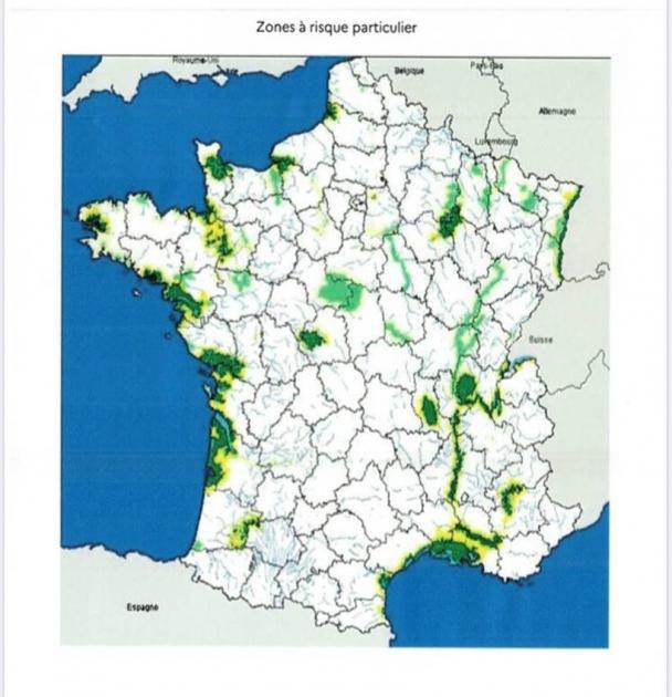 Influenza H5N8 : La France ordonne un confinement partiel des ...