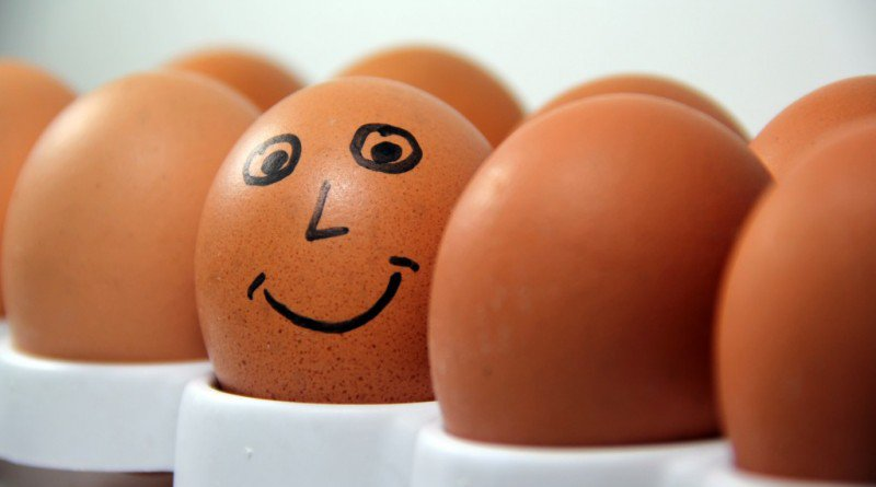 The Exciting Truth About Eggs and Cholesterol Almost Nobody Talks About - Healthy Food Society