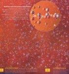 #9 -> Ère du Nucléosynthèse
