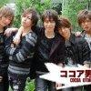ココア男。 Cocoa Otoko - Groupe