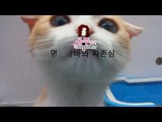 유흥알바 구인구직&#...
