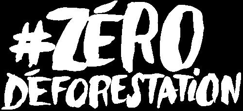Menaces sur les forêts africaines | Greenpeace France