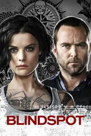 Watch Blindspot - Season 3 Episode 6 : Adoring Suspect