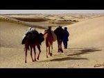 le desert de Tunisie 2010