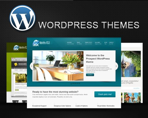 Where to Sell Your WordPress Themes -