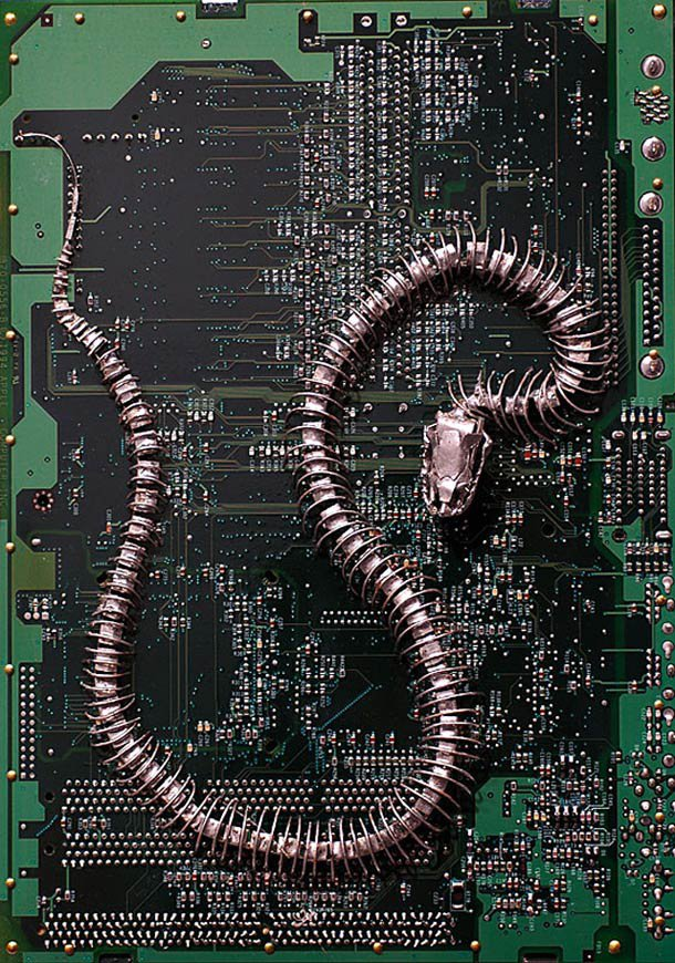 Fossiles Modernes et Circuits Imprimés – Les sculptures de Peter McFarlane | Ufunk.net