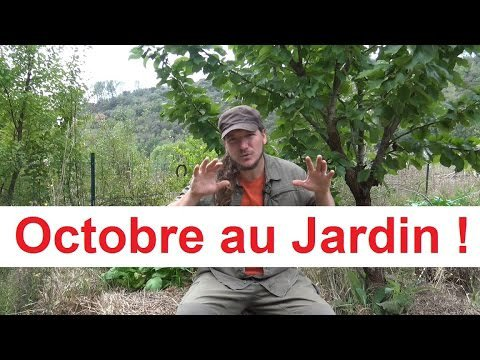 Que faire au jardin en Octobre ? - Permaculture Agroécologie Etc ...