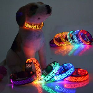 Pet Dog LED Light Glow in the Dark Leopard Skin Collar-8 Colors-4 Light Modes | eBay