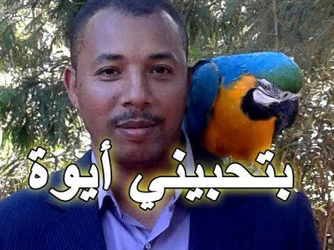 ABOU KHALIL - YouTube