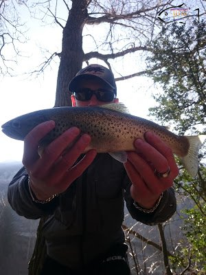 Doktorfishs12, pêche aux leurres en Aveyron: Trio perdant