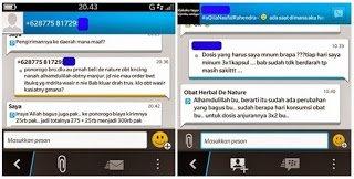 Obat Sipilis Herbal Di Indonesia | chilmanuzi