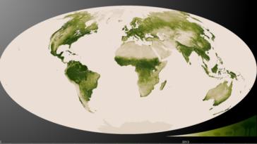 """État d'urgence climatique : il y aura bientôt des """"souffrances humaines indicibles"""""""