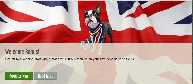 Fetch Best Casino Bonuses UK at Divine Slots