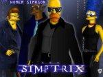 The Simptrix - LA FAMILLE LA PLUS DEGENTÉ DE L'AMERIQUE!!!